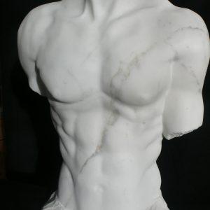 torso 2015 4.jpg