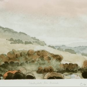 Wensleydale from Moorcock Prince of Wales Artwork