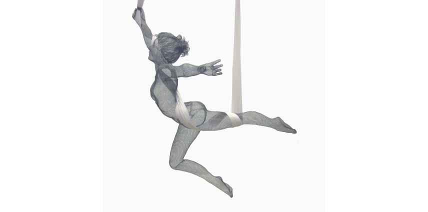 Silk Trapeze Artist NT.png