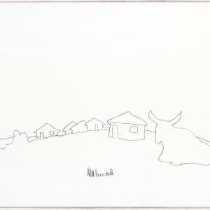 Nelson Mandela - Qunu Landscape with Nguni Cow