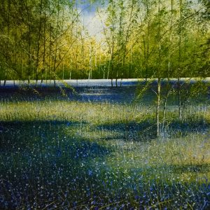 Bluebell Woodland - Rory Browne