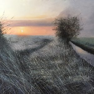 On the way home. Evening light. The fens - Rory Browne