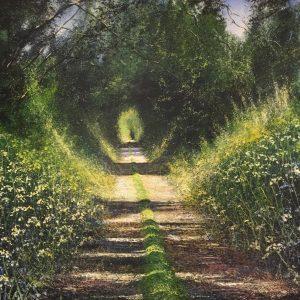 Spring Lane - Rory Browne