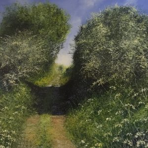 Summer Path - Rory Browne